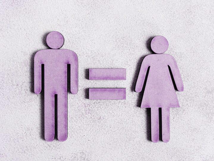 Derechos Políticos de la Mujer busca la Igualdad de género