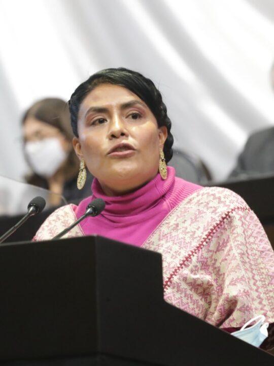 El Tren Maya y el Istmo de Tehuantepec podrían tener una Comisión Especial de Atención y Seguimiento