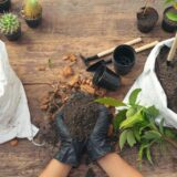 Los 5 beneficios de tener un huerto en casa